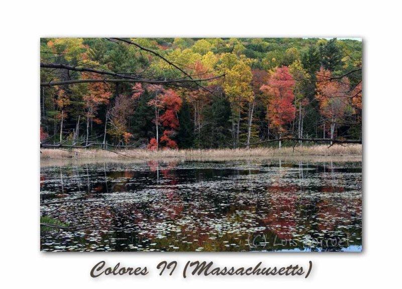 Berkshires (Massachusetts)