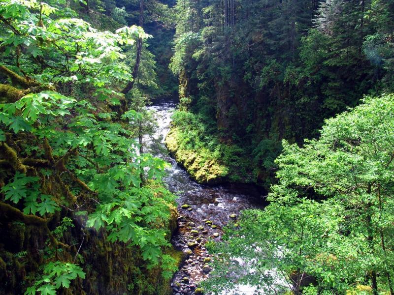 High bridge view upstream