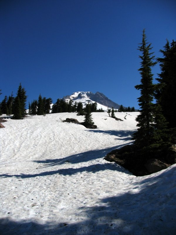Mt Hood near Timberline Lodge