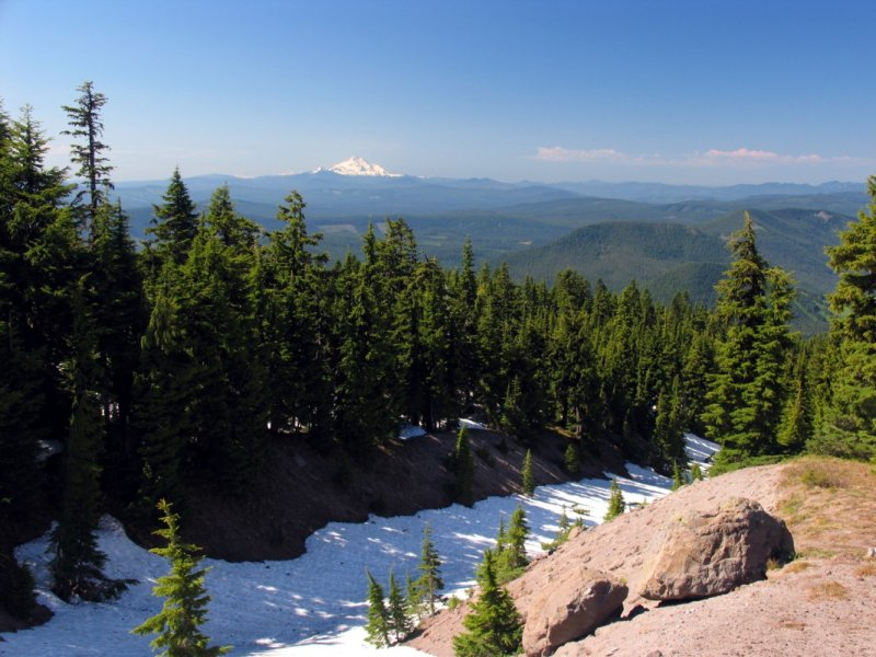 Mt Jefferson in the distance