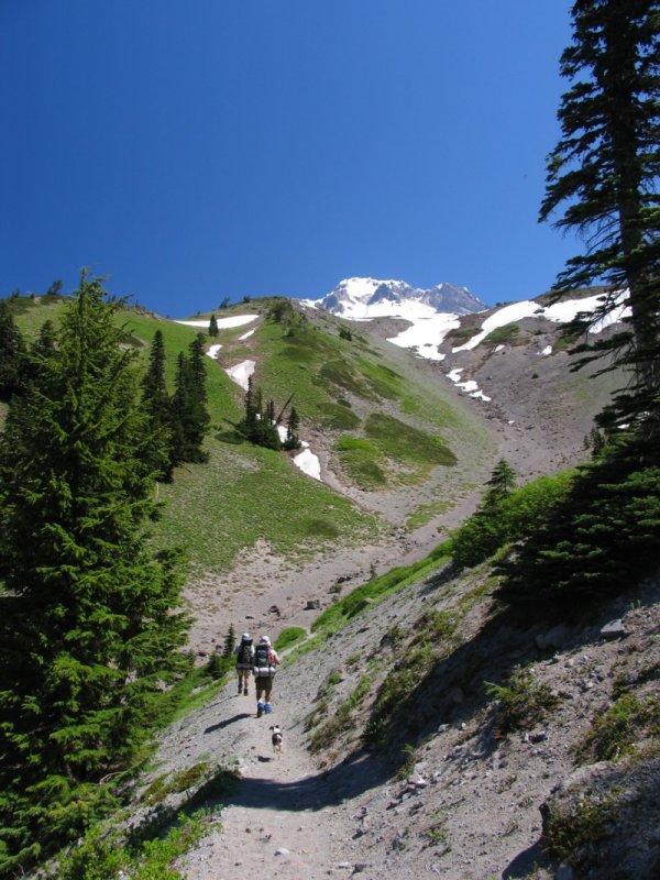 Little Zigzag canyon and Mt Hood
