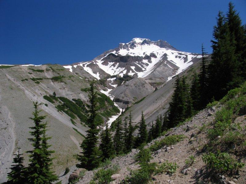 Mt Hood and Zigzag canyon
