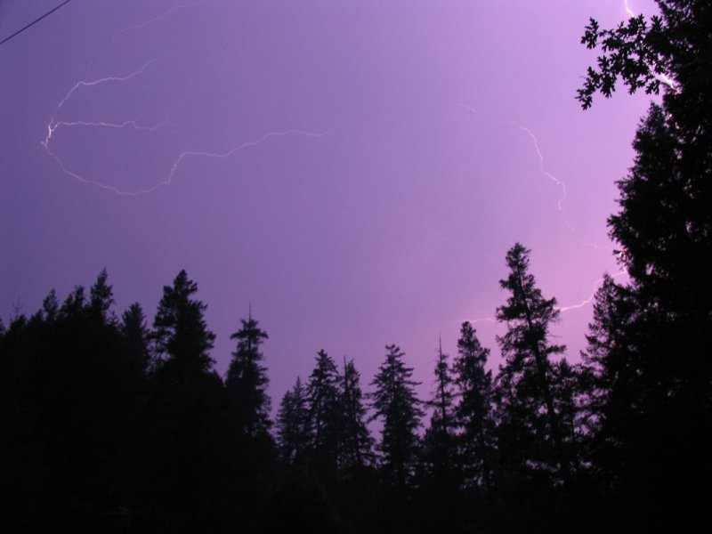 Lightning in my backyard