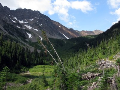 Brushy Creek, beaver ponds, and Glacier Pass