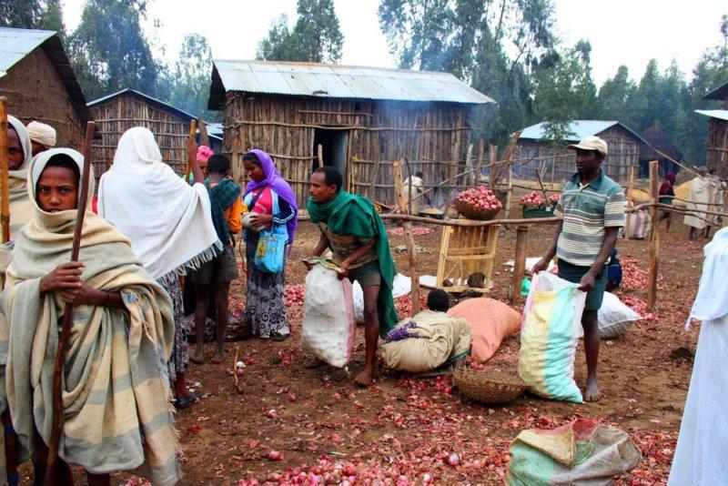 0632 Onion sellers.jpg