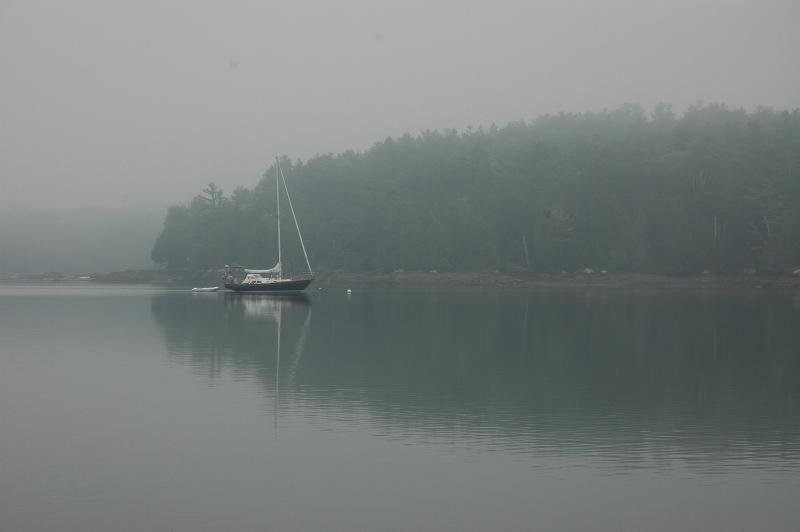 Hope - Quahog Bay