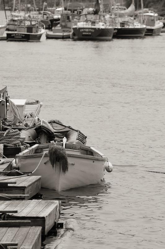 The Push Boat