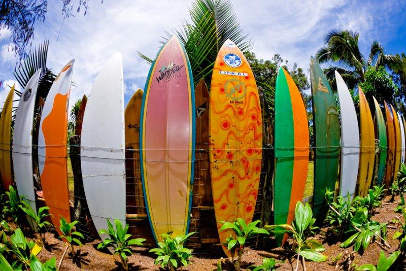 Surfboard fence 2  (RD-606)