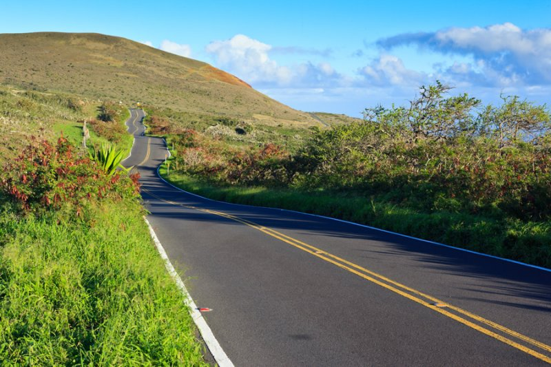 Winding Road to Hana 33991
