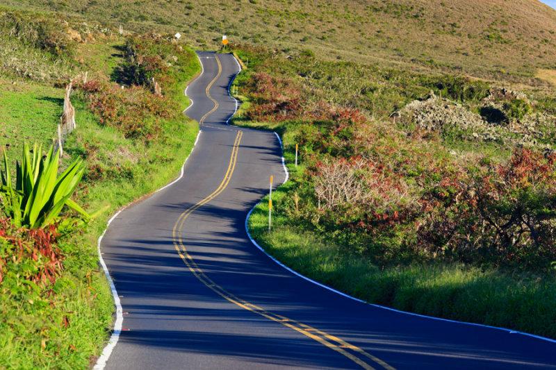 Winding Road to Hana  33994