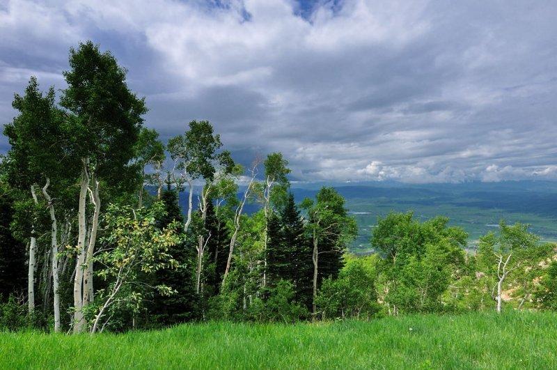 CO2_5639: On top of Mt. Werner