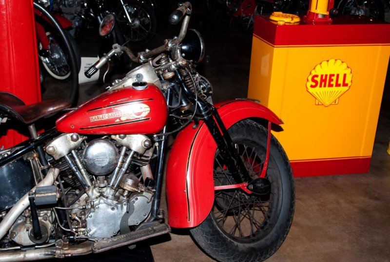 Harley - Shell