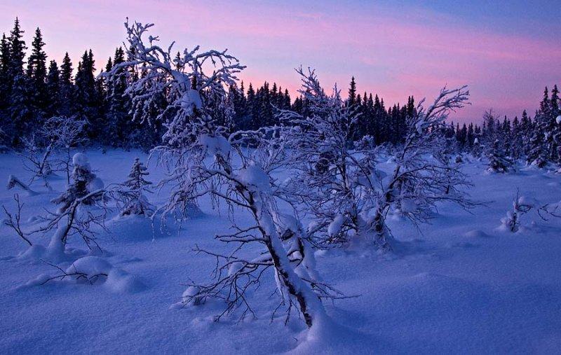 Winter in Snertingdal