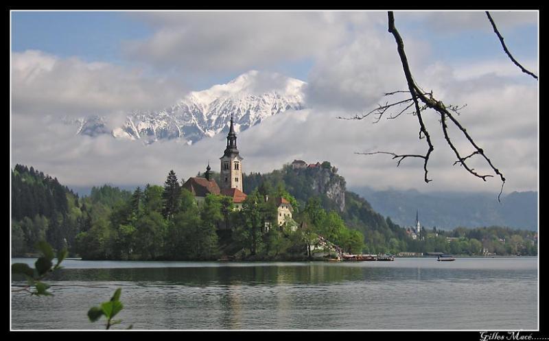 Slovenia, Bled 7141.jpg