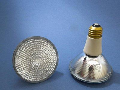 The bulbs