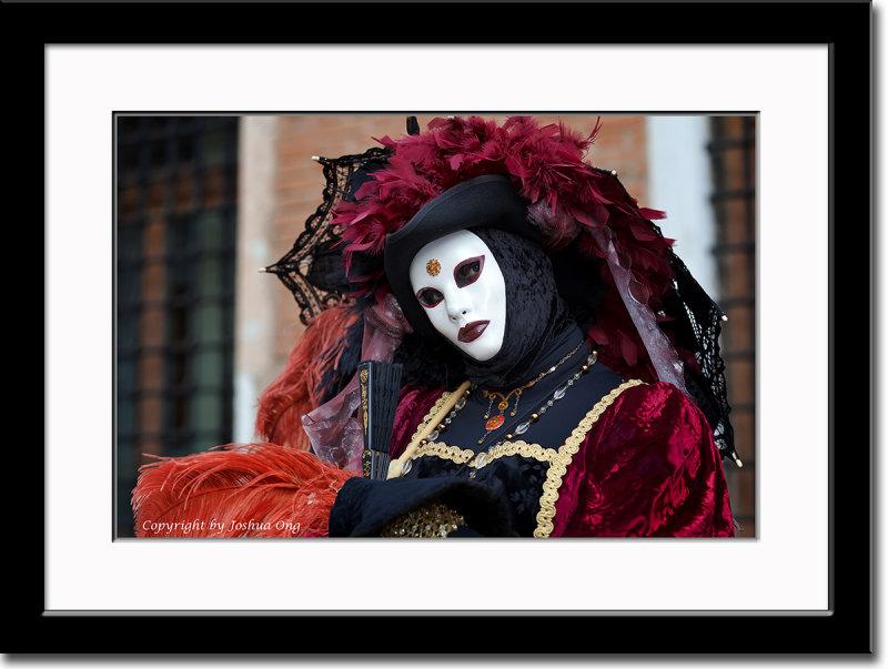 Burgundy and Black Mask
