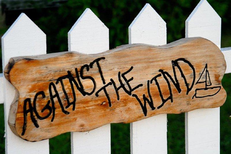 Against The Wind.NT9311.jpg
