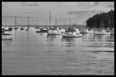 black and white harbor