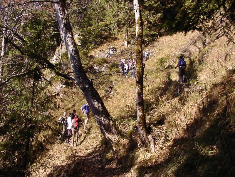 007 Notkarspitze November 2005.JPG