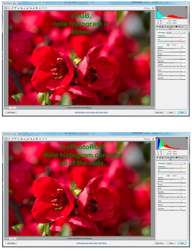 sRGB vs. ProPhotoRGB and Reds.jpg