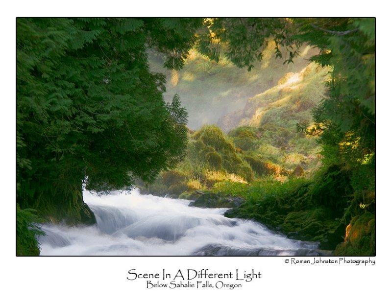 Scene In A Different Light.jpg (NFS)