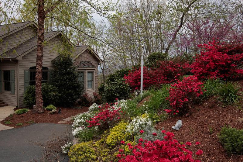 _MG_2648 Especially beautiful spring