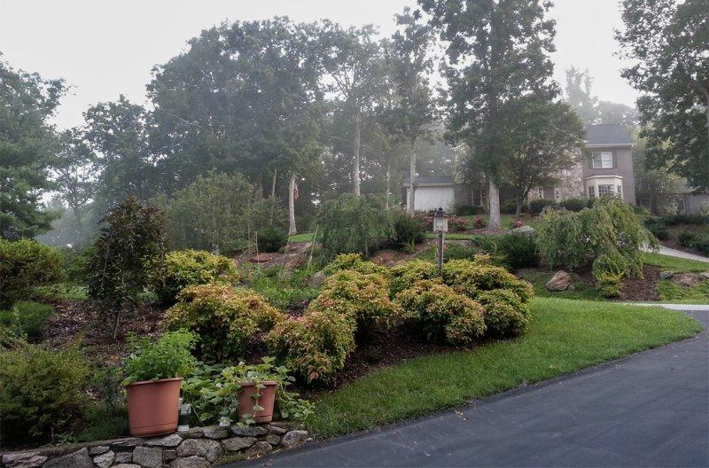 20120808_073824 Morning Haze
