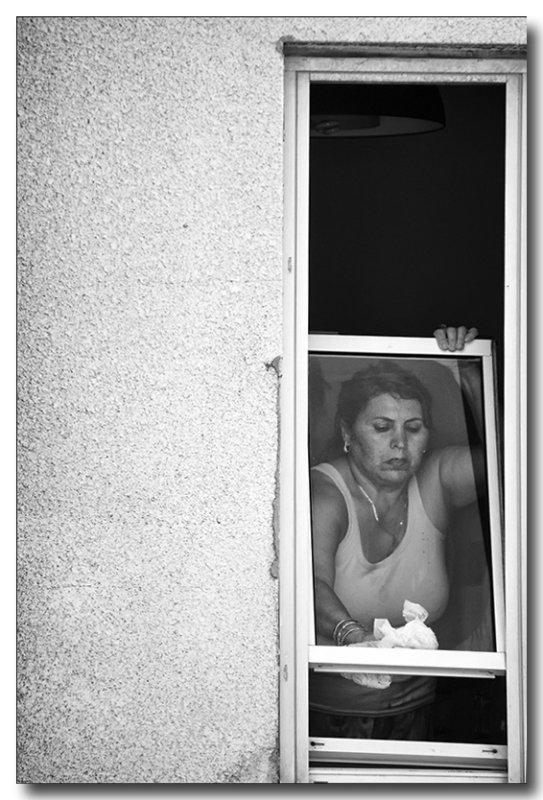 the Window Cleaner.jpg