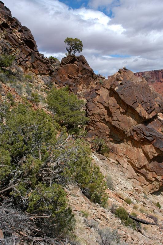 Slope gradient just below the ridge notch;  looking north