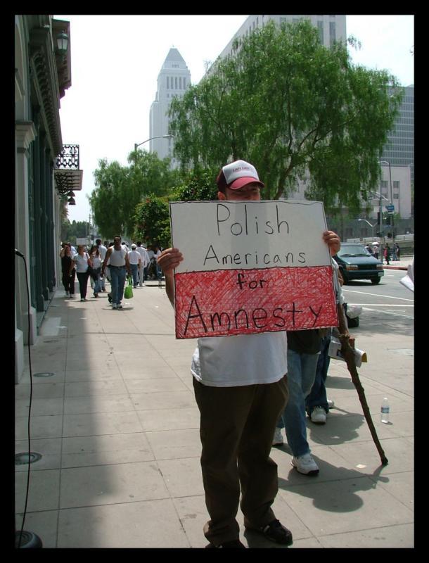 POLISH AMERICAN FOR AMESTY