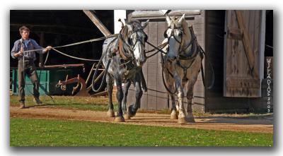 Three O'Clock on the Farm