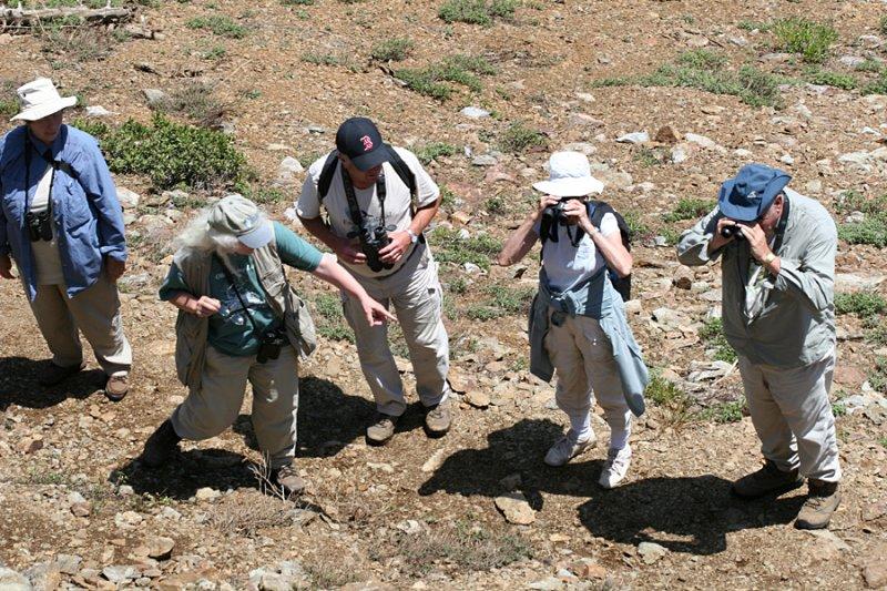 Barbara V., Sue C., Rick W., Joice & Tom P.