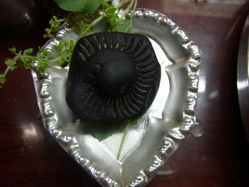 Sri Manthrachala kUrma murthi.JPG