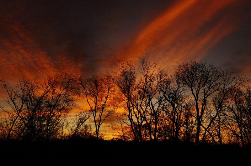 November Sunrise II