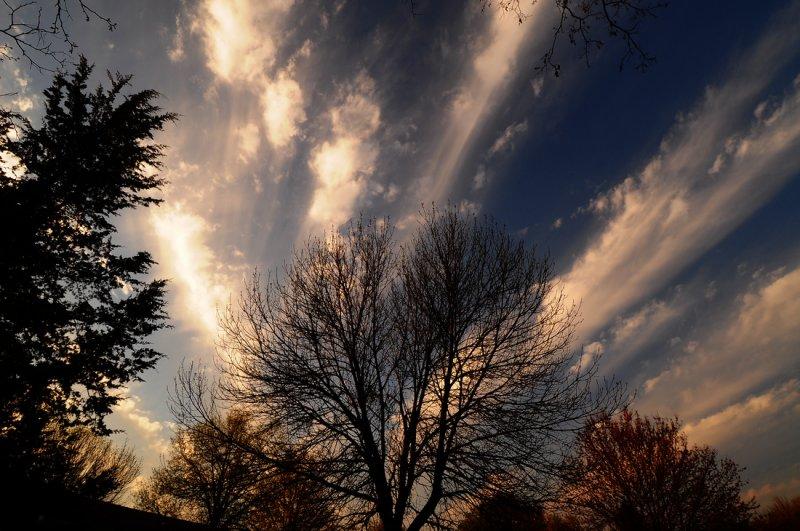 Cirro Cumulus Formations