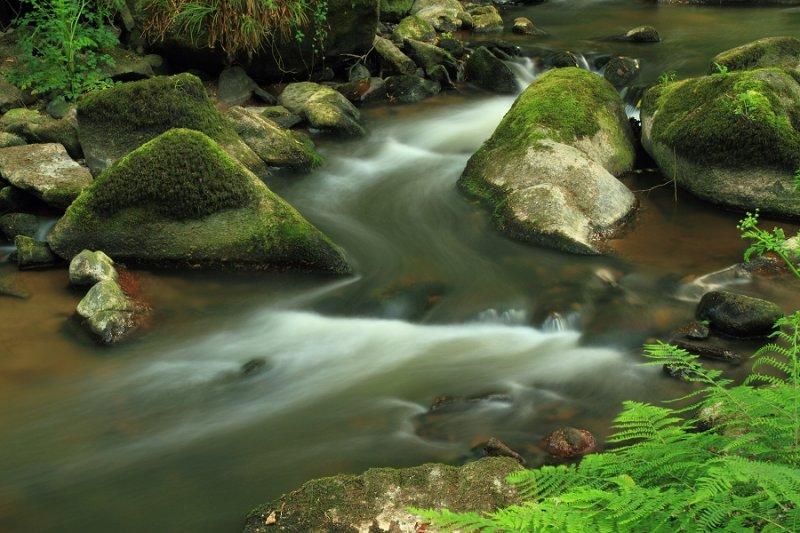 S-Bend & Boulders, River Par, Pontsmill