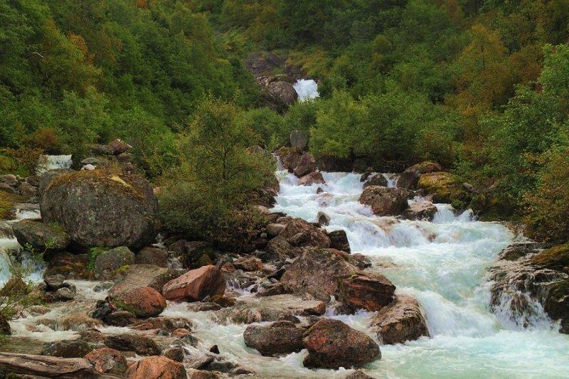 Mountain stream & Autumn colours.