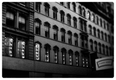 Rugs windows