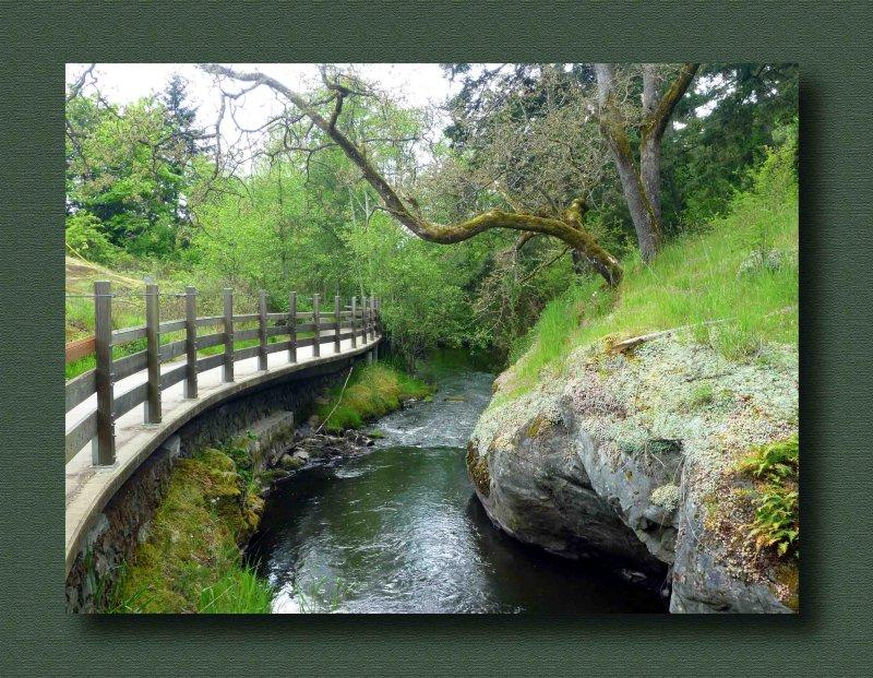 Colquitz River Creek Trail