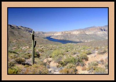 Apache Desert