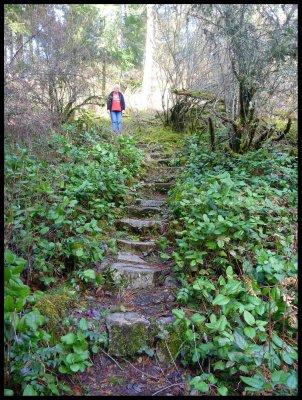 Deb on Pickles' Bluff Trail 6