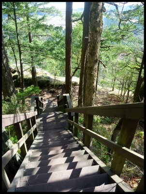 Stairs to Pickles' Bluff 8