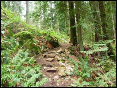 Slektain Trail 4