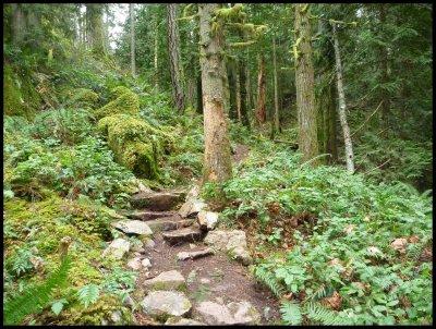 Slektain Trail 5