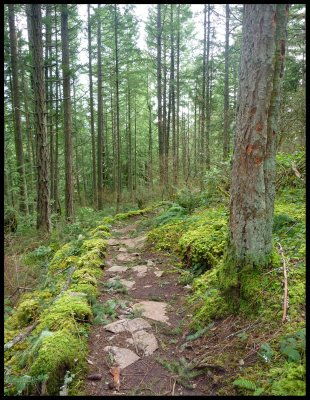 Slektain Trail 8