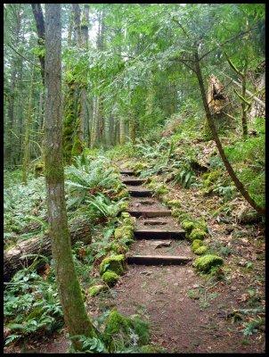 Montfort Trail 1
