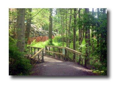 Rithet's Bog Bridge
