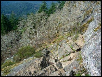 Mt. Finlayson Climb 6