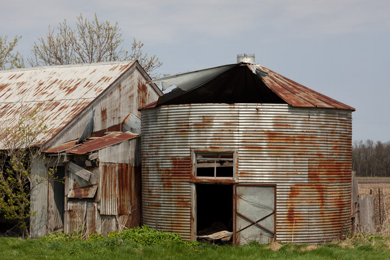 Bin and Shed