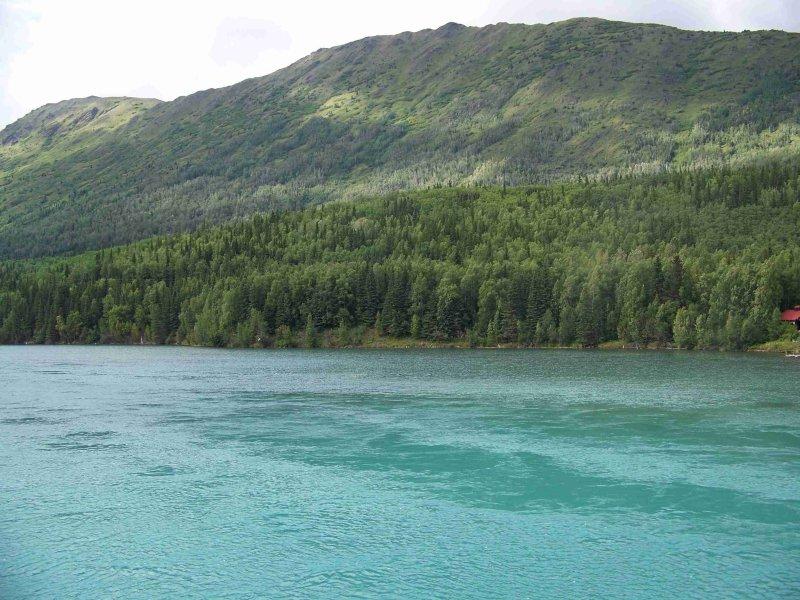Kenai River-5533